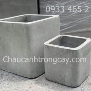 chau-xi-măng-vuong-bo-dep1